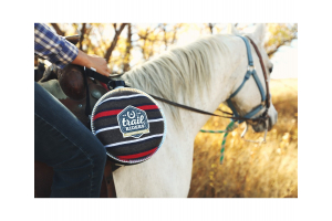 Respiratory Problems: Allergies, Equine Parasite Infection, and More