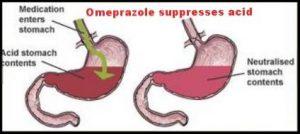 Omeprazole suppresses acid in the stomach