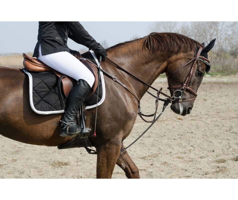 Eventing Rider Turnout & Dress Code